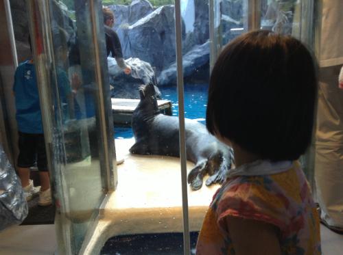鳥羽水族館