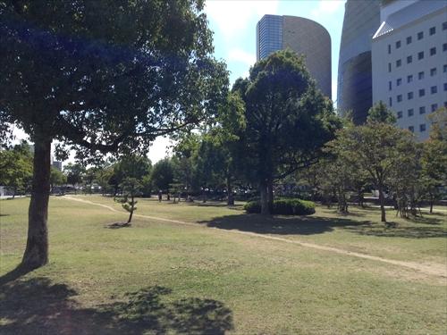大阪城大手門付近芝生