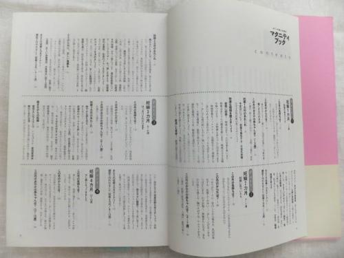 maternity-book2