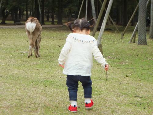 鹿と娘で奈良