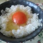 大分県の高級卵・蘭王は黄身が濃い!子供も安心して食べられる健康たまご