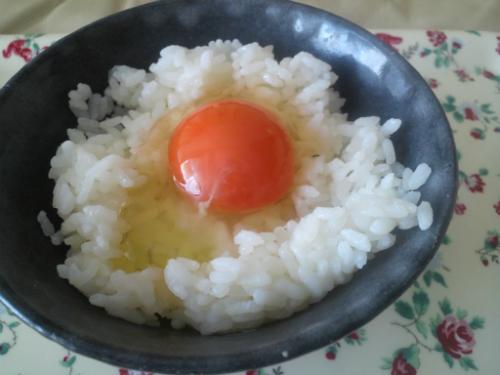 自然卵・蘭王