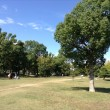 大阪城大手前芝生広場