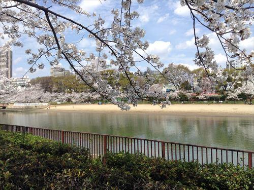 大阪ふれあいの水辺(毛馬桜ノ宮公園)