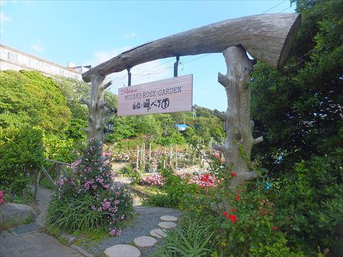「浜千鳥の湯・海舟」バラ園