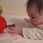育児情報サイト