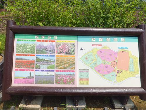 和泉リサイクル環境公園とは
