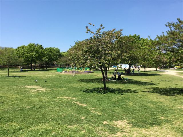 「八幡屋公園」芝生広場
