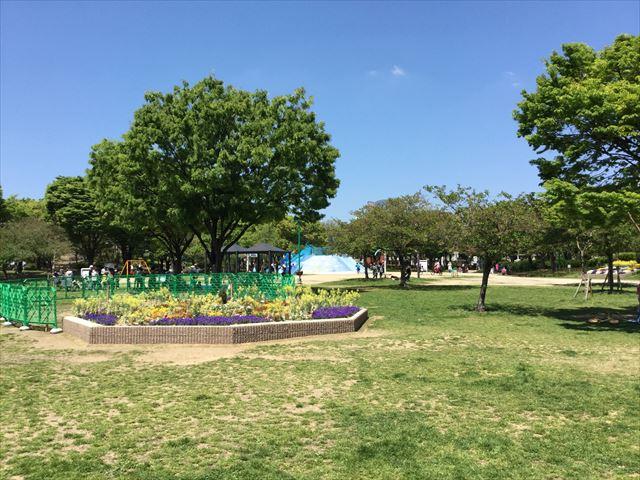 大阪「八幡屋公園」の芝生広場