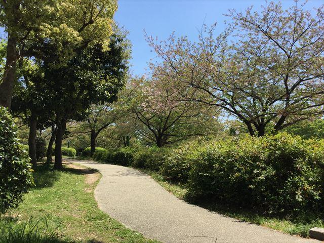 「八幡屋公園」ウォーキングコース