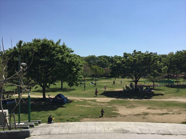 「八幡屋公園」芝生広場、大阪プール側から撮影