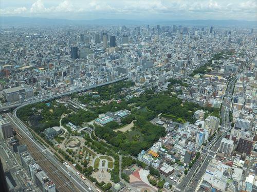 ハルカス300からの眺め・大阪市立動物園、大阪市立美術館、茶臼山