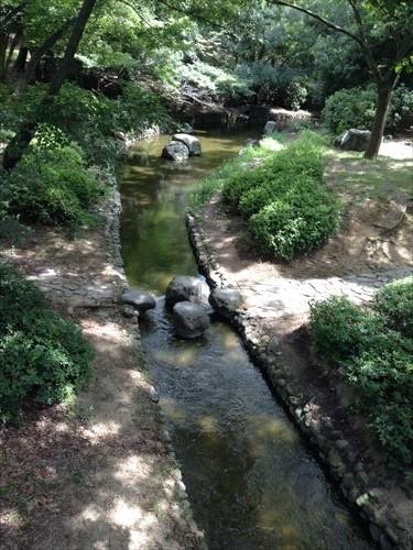 大泉緑地・水辺