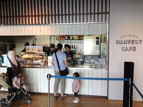 京都水族館ハーベストカフェ