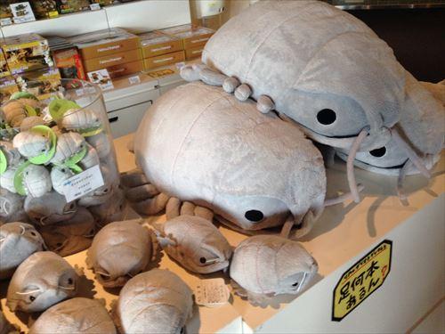 京都水族館・ミュージアムショップ