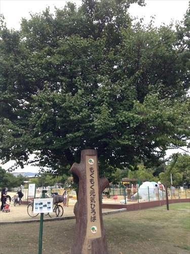 久宝寺緑地・もくもく元気広場
