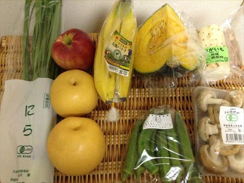 ビオマルシェ・有機野菜&有機果物お試しセット