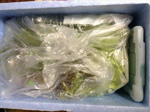有機野菜のビオマルシェ・多菜セット開封