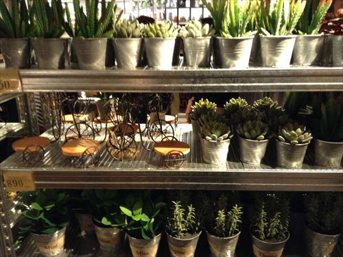 オーサムストアの雑貨・多肉植物