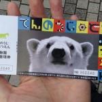 天王寺動物園の入園券