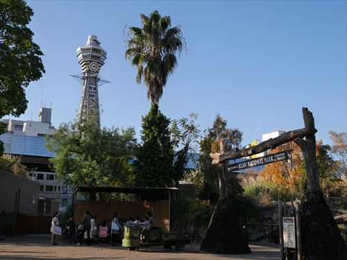 tennoji-zoo018