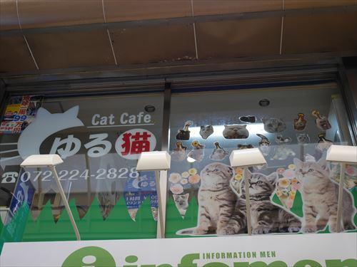 堺東駅・猫カフェ「ゆる猫」