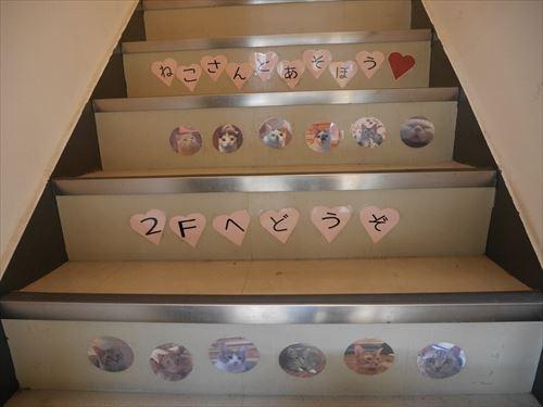 堺東駅・猫カフェ「ゆる猫」階段で2階へ