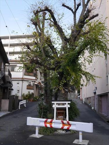 tamatsukuri-inari026