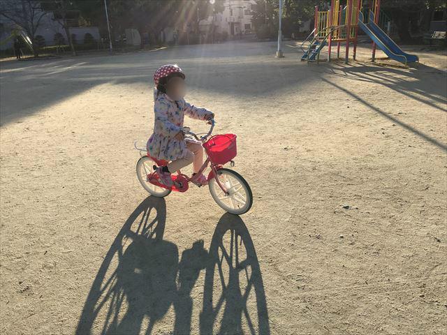駒無し自転車に乗れるようになった直後の様子
