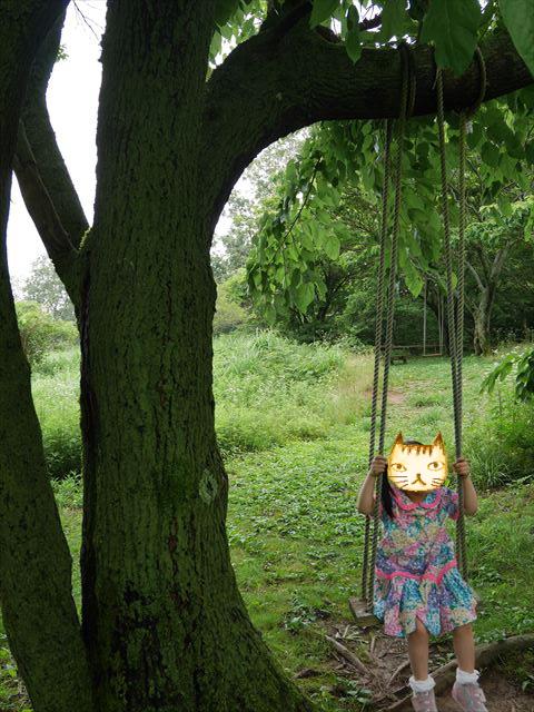 メナード青山リゾートのハーブガーデン「ラベンダーフェスタ」木のブランコ