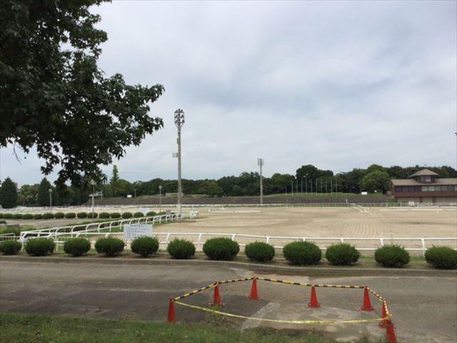 乗馬苑・鶴見緑地公園