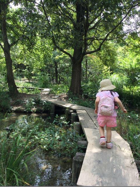 緑のせせらぎの橋を渡る子供