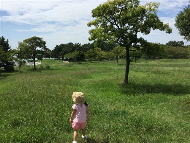 舞洲の芝生公園