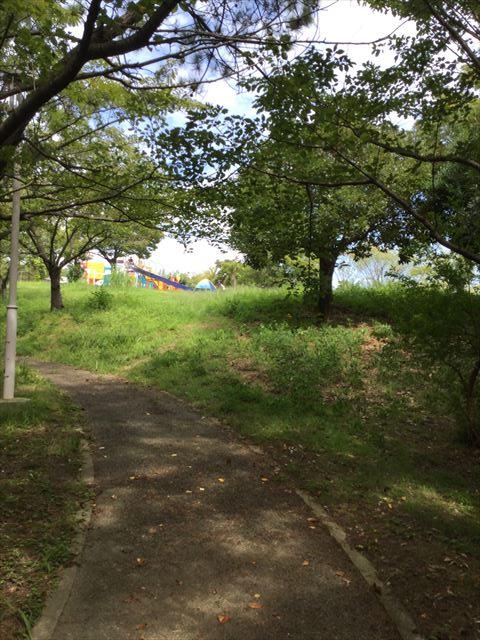 木陰から見た舞洲緑地公園