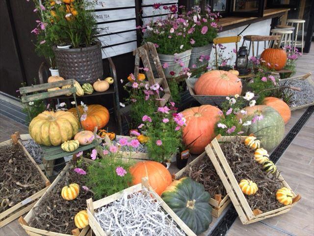 天王寺公園「てんしば」スプーンビルのお花のアレンジメント