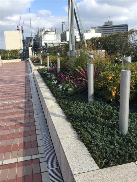 大阪ステーションシティ14階「天空の農園」花壇