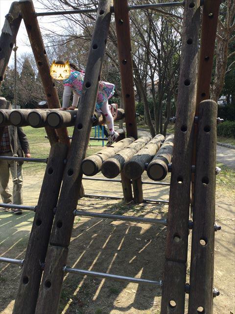枚方市楠葉「市民の森」の遊具芝生広場、アスレチック風の遊具
