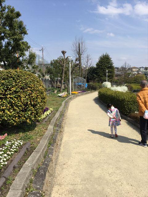 枚方市楠葉「市民の森」を歩く娘