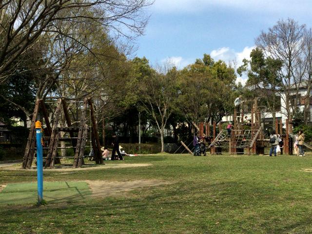 枚方市楠葉「市民の森」の遊具芝生広場