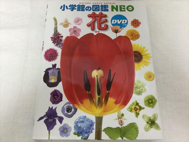 「小学館の図鑑NEO」花(DVDつき)