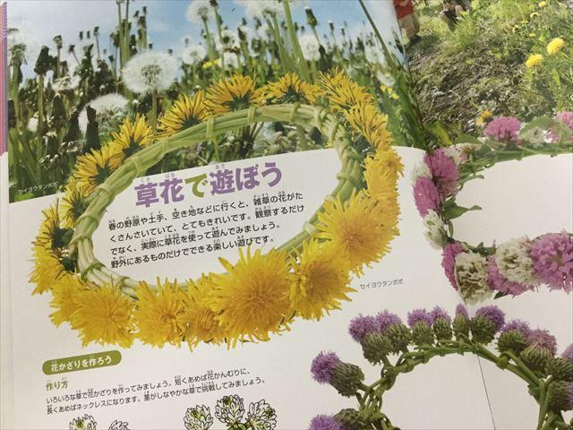 「小学館の図鑑NEO」花(DVDつき)、草花で遊ぼう