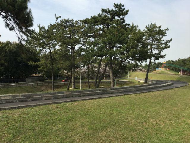 浜寺公園内のゴーカートの道