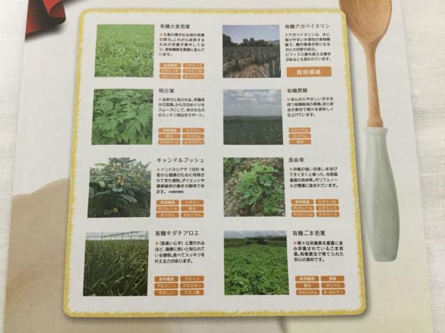 「三ツ星青汁レストラン 極選青汁」原材料