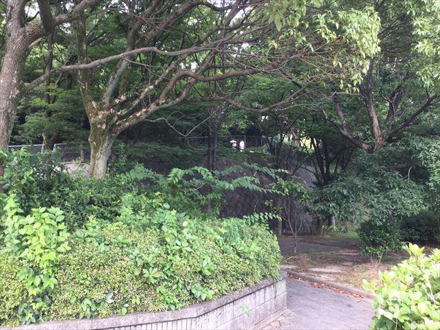 「あらかし公園」の頂上、石清水八幡宮に向かう道