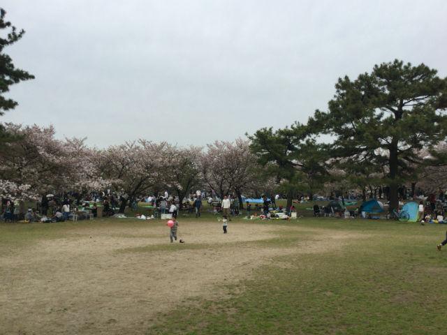 浜寺公園の広場とバーベキューをする様子
