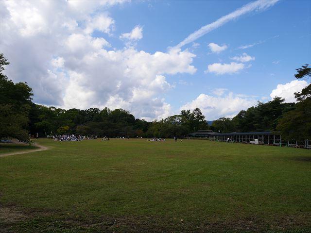 「京都府立植物園」の大芝生