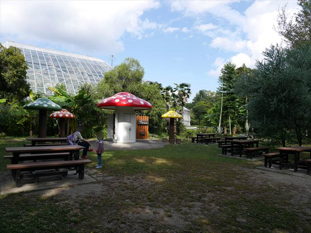 京都府立植物園「きのこ文庫」ベンチ