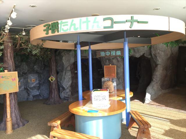 平成榛原子供のもり公園「子供たんけんコーナー」
