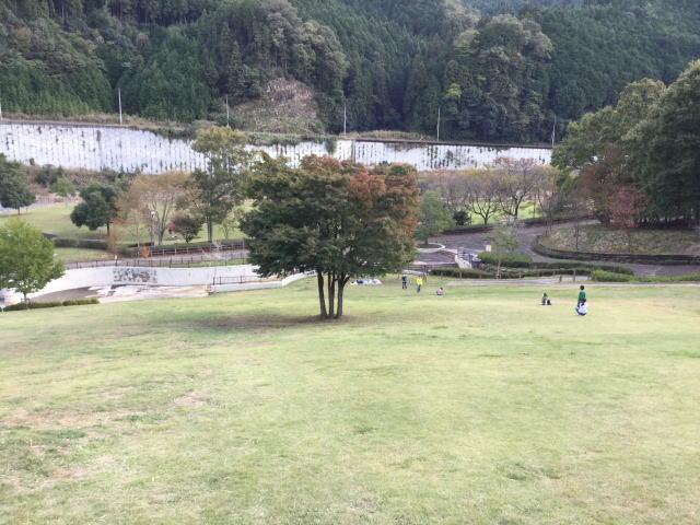 平成榛原子供のもり公園「恐竜の国」草斜面