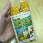 北海道産ポップコーンの種(豆)
